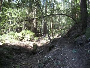 Sanborn County Park Connector Trail